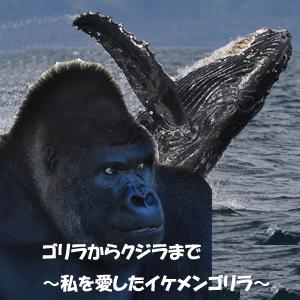 スター千一夜2015 月9ドラマ「ゴリラからクジラまで~私に恋したイケメンゴリラ」
